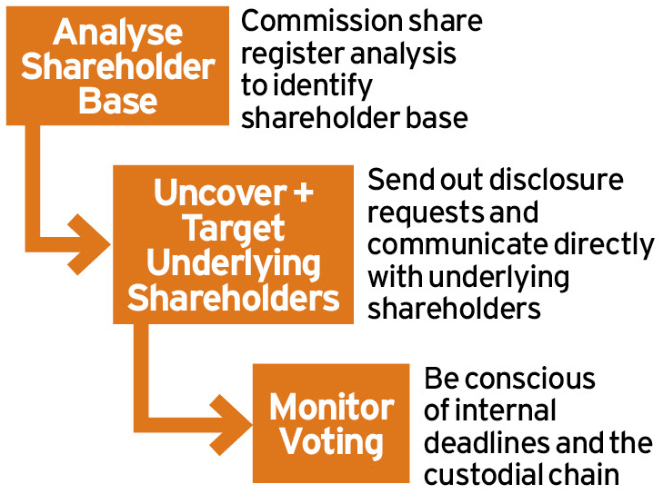 Maximising Shareholder Engagement in Proxy Voting Ethical Boardroom